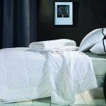 Одеяло шелковое зимнее Asabella CS-3Z | CS